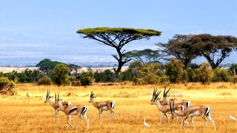 De mooiste plekken in Zuid-Afrika