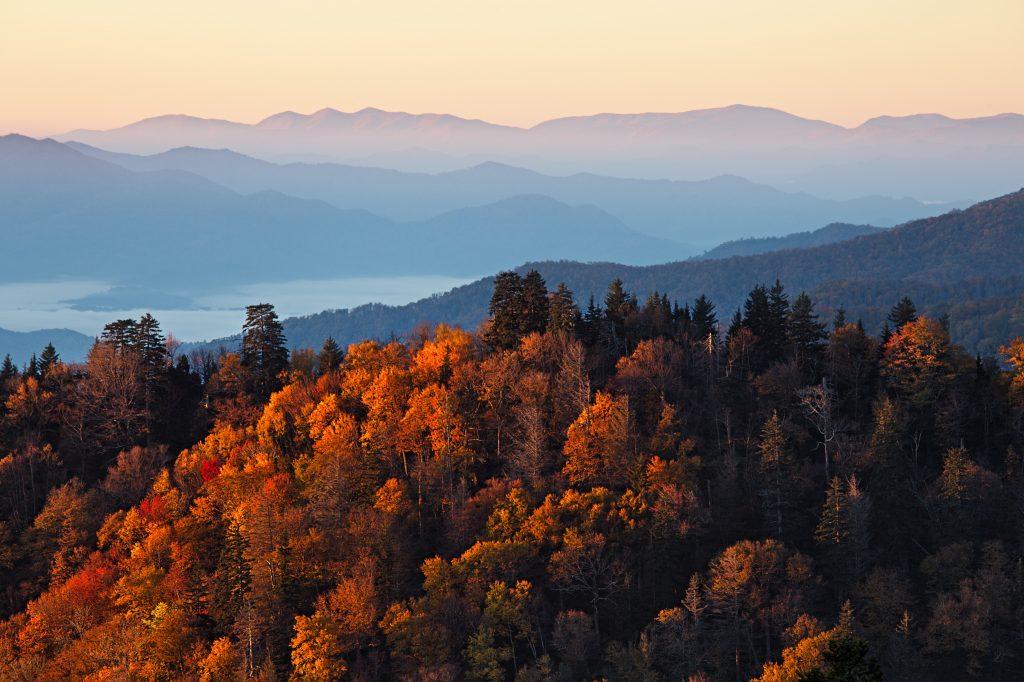 Travel Bricks Nationale Parken Amerika -Great Smoky Mountains National Park (North Carolina & Tennessee)